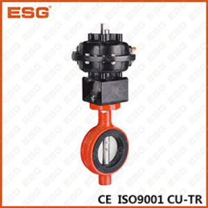 300 Series Esg Pneumatic Butterfly Valve pictures & photos