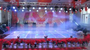Transparent Stage, Fibrous Stage, Glass Stages-Reichy pictures & photos