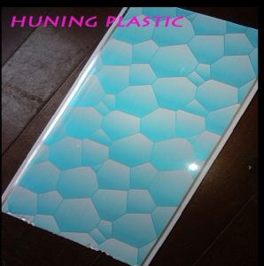 New Mould 2012 PVC Panel 25*0.6 1.8kg (RP20-06) pictures & photos