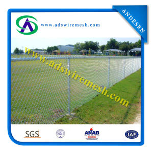 Chain Link Fence (PVC&Galvanized) pictures & photos