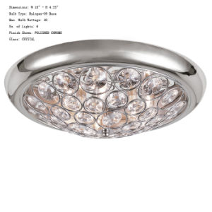 New Modern Style Crystal Ceiling Lamp (TR010C6)