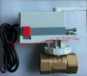 2-Way Brass Electric Actuator Control Ball Valve 24VAC (BS-878 DN50) pictures & photos