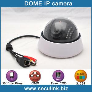 720P Dome Camera (IPC2100B)