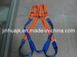 Safety Harness (JE1047) Ce En361 pictures & photos