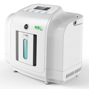 1L Home Use Psa Portable Oxygen Concentrator Equipment pictures & photos