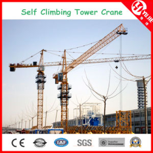 Qtz50 (4810) 4 Ton Self-Climbing Tower Crane at 29m pictures & photos