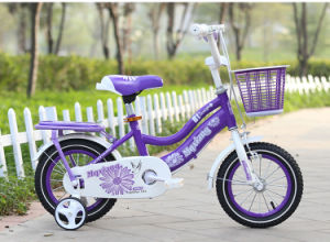 Red Tube Kids Bike/High Quality Child Bike with 4 Wheel Bike/Exercise Kid Bicycle pictures & photos
