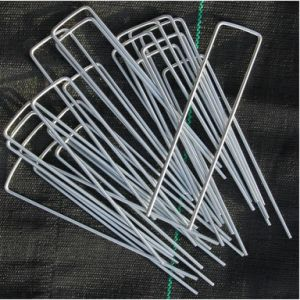 Metal Galvanized (zinced) Nails for Plastic Dowels pictures & photos