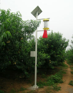 Solar Intelligent Agriculture Insect/Insects Killer Light, Manufacturer pictures & photos