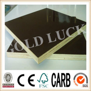 Qingdao Gold Luck Film Faced Plywood Artificial Board pictures & photos