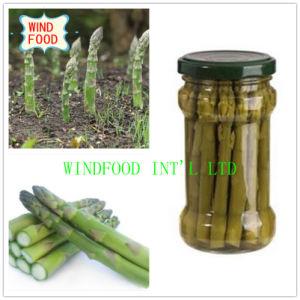 Glass Pot Green Asparagus