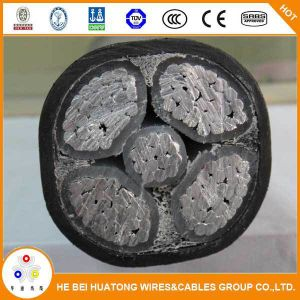 Low Voltage 0.6/1kv Aluminum Coductor XLPE Insulated and PVC Sheathed Power Cable pictures & photos