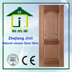 Moulded Door Skin (JL-003)