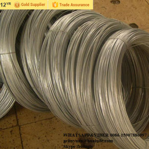 Low Price Electro Galvanized Iron Wire pictures & photos
