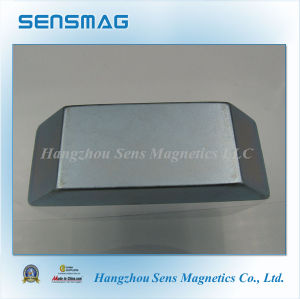 Ladder-Shaped Permanent NdFeB Neodymium Magnet with Zn Coated pictures & photos