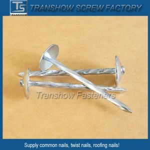 Twisted Shank Umbrella Head Roofing Nails pictures & photos