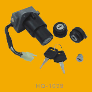 Motorbike Ignition Switch, Motorcycle Ignition Switch for Honda Hq1029, pictures & photos