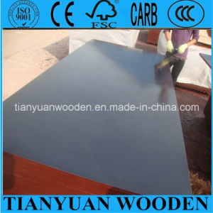 Waterproof Shuttering Marine Film Faced Plywood pictures & photos