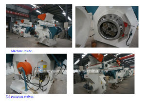 Top Seller Wood Biomass Pellet Mill Machine pictures & photos