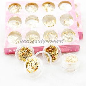 Nail Art Foils Nuggets Leaf Products Manicure Beauty Kit (D56) pictures & photos