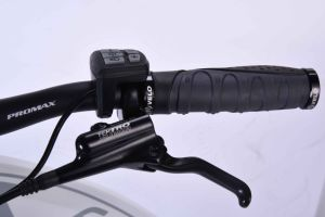 36V Electric Bike with SANYO Lithium Battery EL-dB7012L pictures & photos
