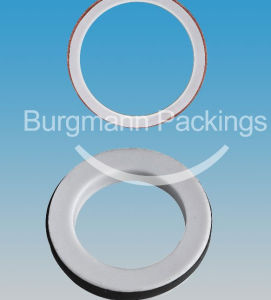 PTFE Jacketed Gasket