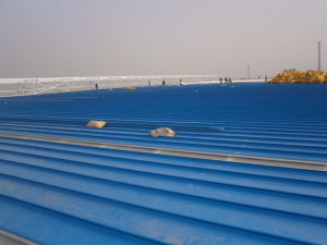 Roofing Sheet Galvanized Steel Sheet (Zy183) pictures & photos