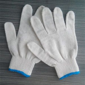 7 Gauge 10 Gauge Industrial Safety Cotton Knitted Gloves White Working Gloves pictures & photos