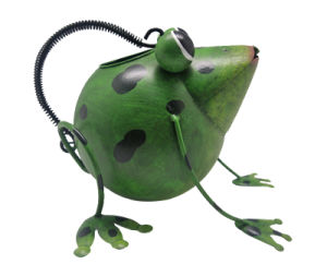 Frog Garden Watering Cans (WC-A-7) pictures & photos