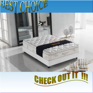 Mattresses for Beds (6813-1#) pictures & photos