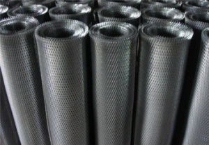 Petite Expanded Metal Mesh/ Small Steel Nets pictures & photos