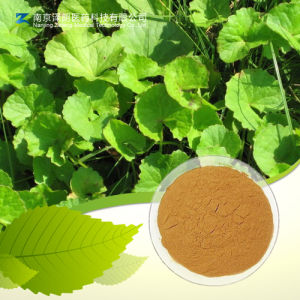 Fatory Supply Centella Asiatica Extract Asiaticoside pictures & photos