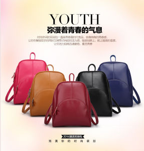 2015 European Style Designed Newest Shoulder Leather / PU Backpack