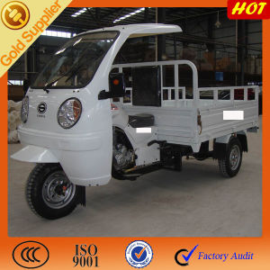 China Motorized Adult Large Cargo Tricycle with Cabin pictures & photos