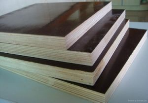 Best 9mm 12mm 15mm 18mm 21mm WBP Glue Brown Black Film Faced Plywood (marine plywood) pictures & photos