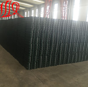 HDPE Plastic Porous Grass Pavers / Paving Grids pictures & photos