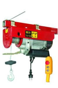 WT-750/1500 Electric Hoist (750/1500LB) pictures & photos