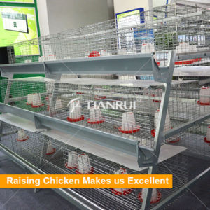 Hot DIP Galvanized Baby Layer Cages/Baby Broiler Cages Rearing House pictures & photos