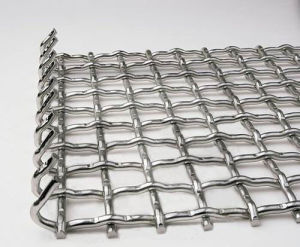 HP-04 Galvanized Crimped Wire Mesh pictures & photos