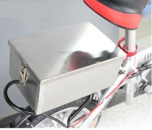 ISO Manufacturer LiFePO4 Battery (12V 24V 36V 48V) for Ebike Scooter UPS pictures & photos