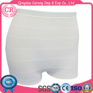 Medical Wholesale Seamless Incontinence Panty Underwear pictures & photos