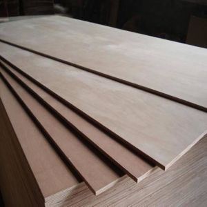 4*8 Best Gurjan Plywood for Indian Market pictures & photos