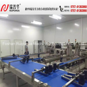 Automatic Packing Machine/Packing Line (Sinking Type) pictures & photos