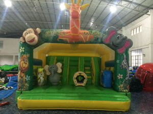 Cheap Inflated Toy/Jungle Moonwalk Inflatable Bouncer for Kids (T1-110) pictures & photos