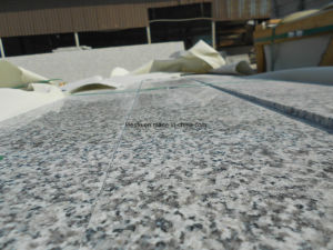 Factory Direct G623 Silver Grey Granite Steps Stone Slab for Floor Covering Tiles pictures & photos