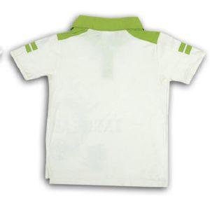 Zaxwear Bulk Wholesale Summer Boys T-Shirt (BCT13006) pictures & photos