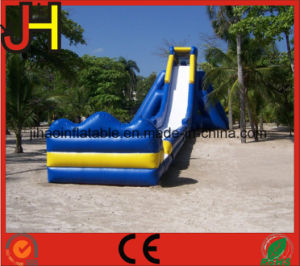 Giant Inflatable Slide for Adults pictures & photos