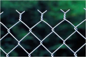 High Quality Protection Fencing