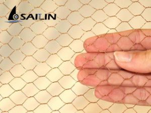 Sailin Hexagonal Wire Mesh for Netting with ISO pictures & photos