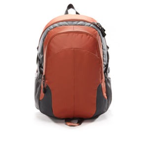 "Laptop Bag Laptop Backpack Backpack for 15.6"" (SB6979) pictures & photos"
